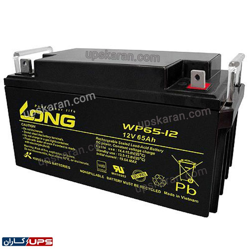 باتری یو پی اس ۱۲ ولت ۶۵ آمپر لانگ