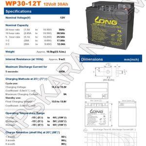 باتری یو پی اس 12 ولت 30 آمپر لانگ-دیتاشیت1